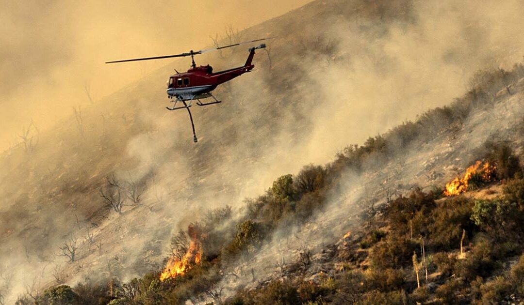 California firefighters flee from angry bull